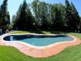 Aqua Dream swimming pool gallery sideshot of freeform pool