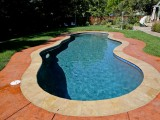 Aqua Dream swimming pool gallery side view of freeform pool with view of yard